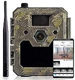 icuserver Wildtierkamera icucam 4G / LTE - 4000...