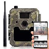 icuserver Wildtierkamera icucam 4G / LTE - 1 Jahr...