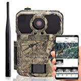 Wildtierkamera icucam 4G lite - 4000 Bilder zu...