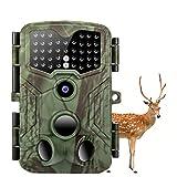 Wildkamera 16M & 1080p 2 TF LCD Nachtsichtkamera...
